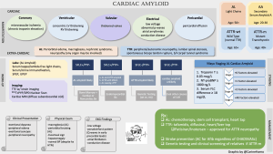 CardioNerds Cardiac Amyloid