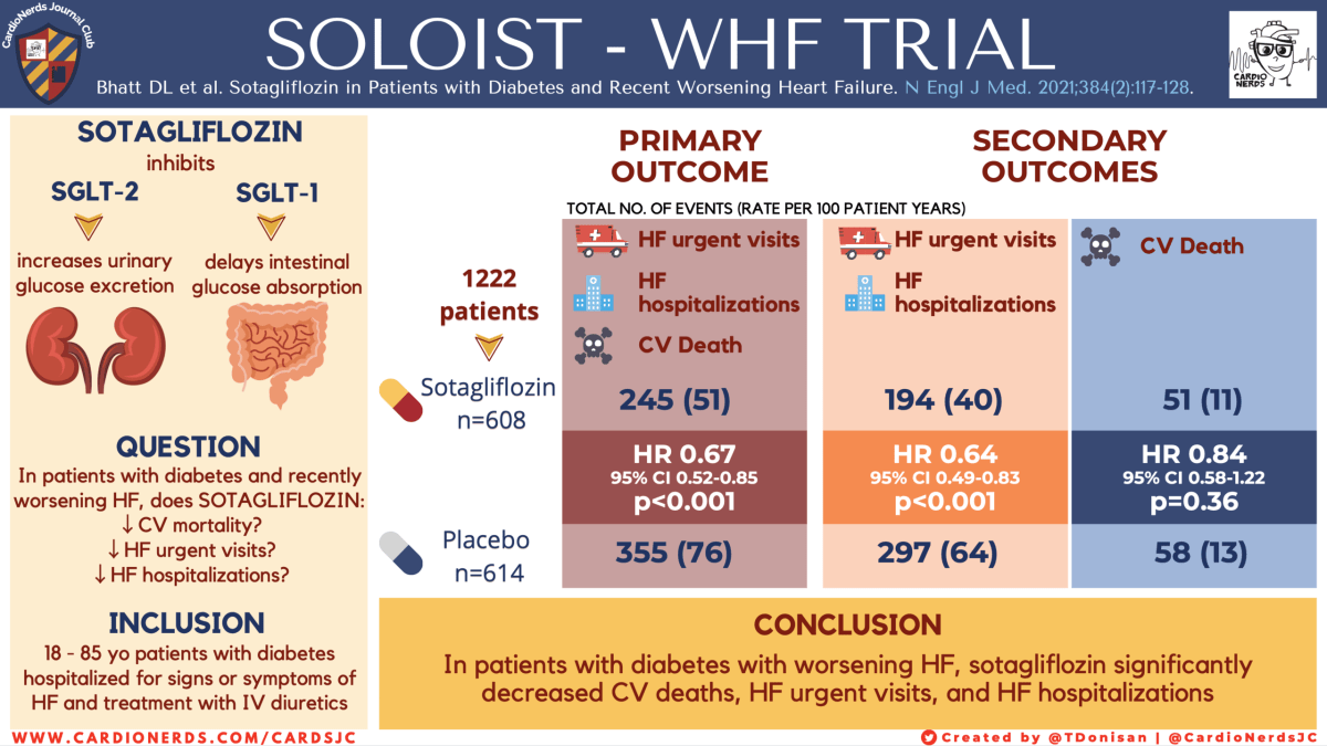 SOLOIST-WHF Trial Visual Abstract