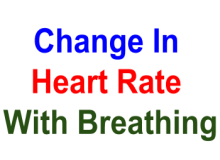 Change in heart rate with breathing