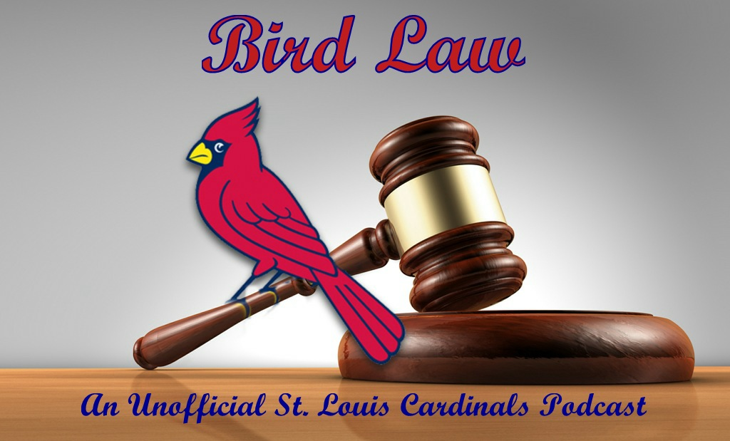 Bird Law 3 8 Rotation Lineup #bird law #which is for birds #dad #father's day #dad jokes. cards conclave