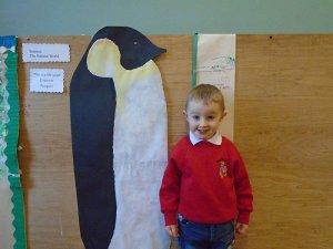 penguin-measuring