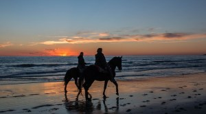couples riding on horse in beach
