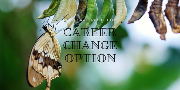 Career Change Option – How to Equip Yourself