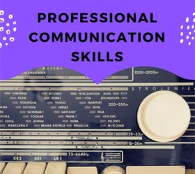 professional communication skills