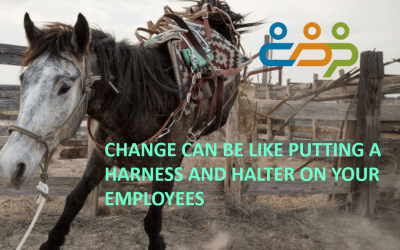 Change Can Be Like Putting a Harness and Halter On Your Employees