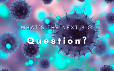 What's the Next Big Question?