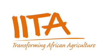 International Institute of Tropical Agriculture (IITA) Job Recruitment (3 Positions)