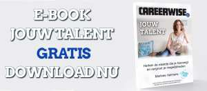 Gratis e-book jouw talent