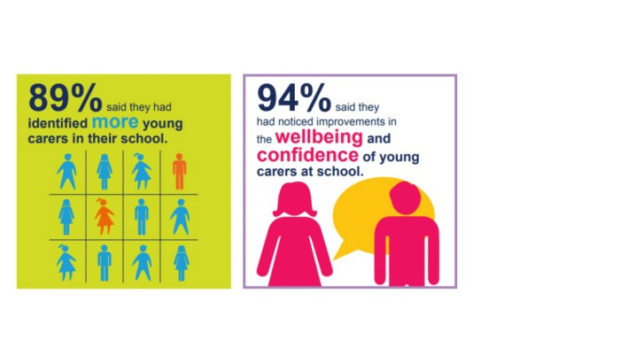 Results of a survey on Young Carers in Schools programme