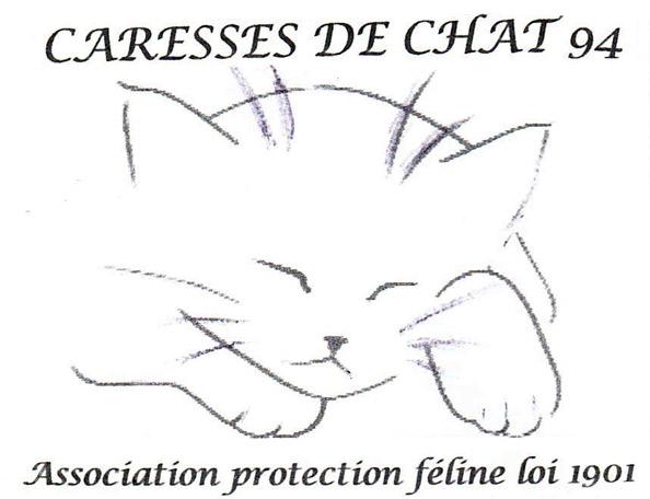 """Résultat de recherche d'images pour """"caresse de chat 94 logo"""""""