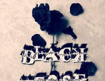 black rose novel by samreen shah
