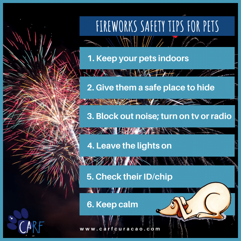 CARF Fireworks Luke