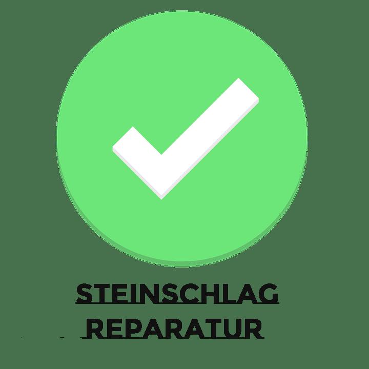 Steinschlag Reparatur
