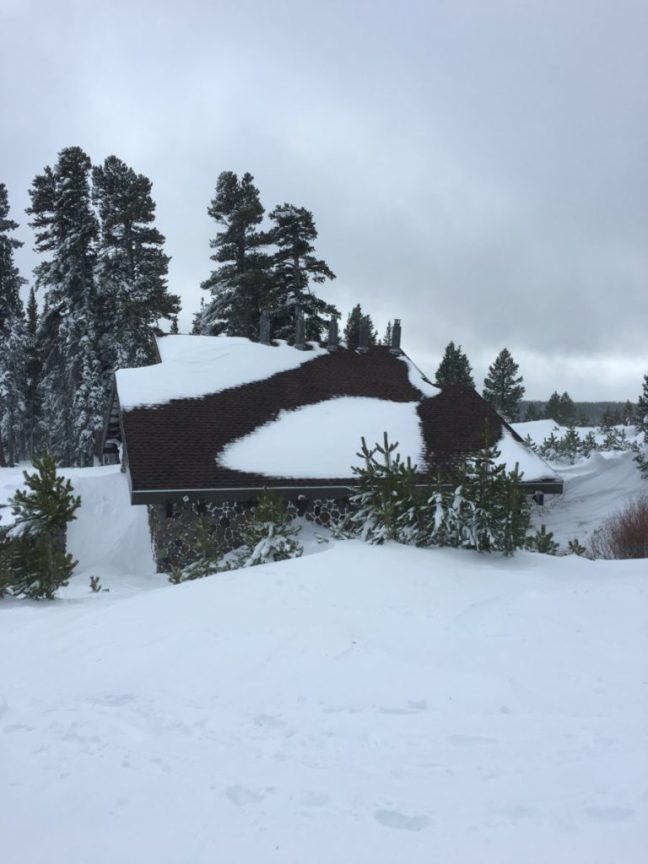 That is a year-round bathroom and it's the best family feature in a FREE sledding hill. Lake Tahoe, Free sledding,