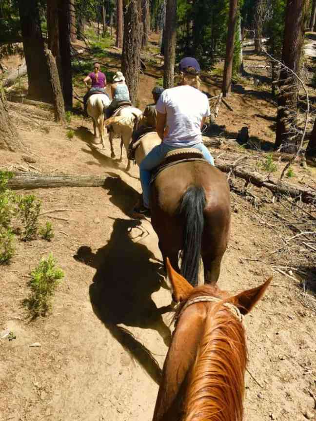 Horse back riding is one of the things to do in Glacier National Park with kids.