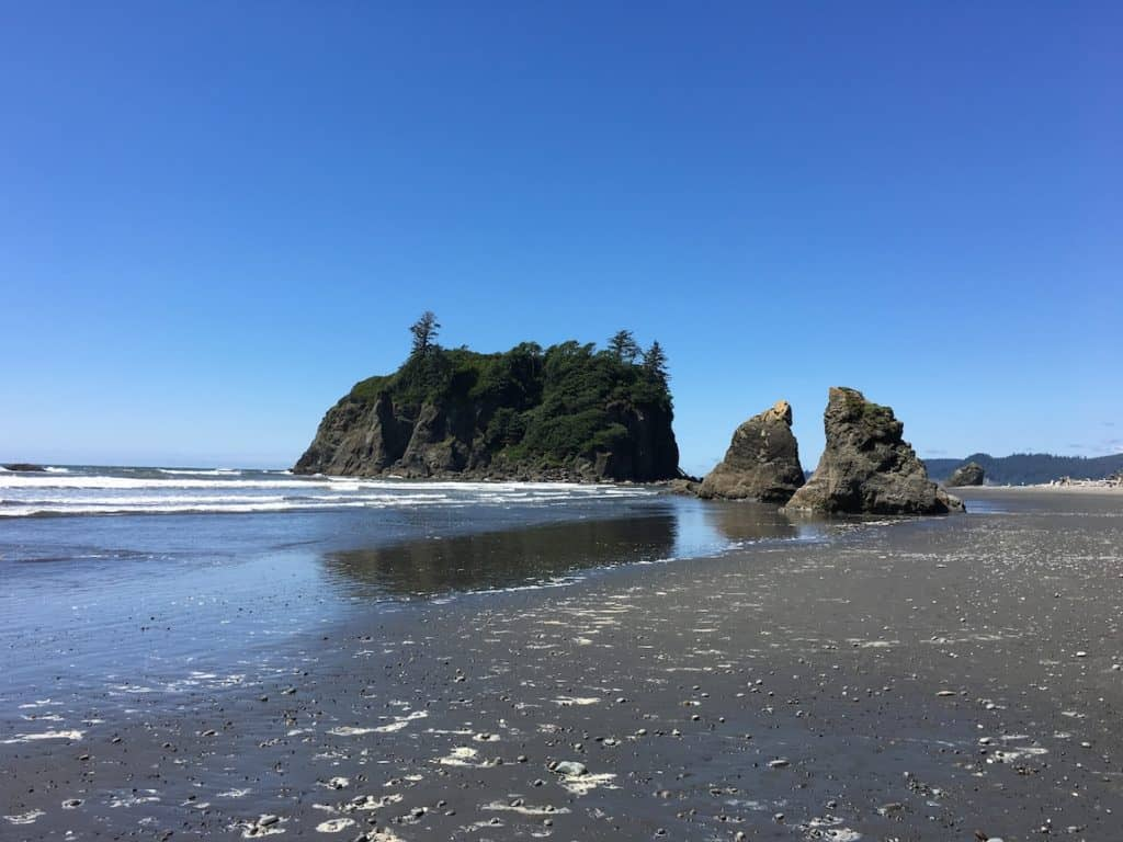 Explore The Beaches Of Olympic National Park With Kids.