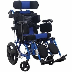 Silla de ruedas para PCA