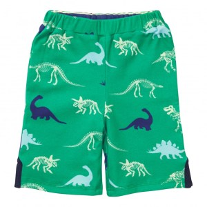 reversible_shorts-dinosaur