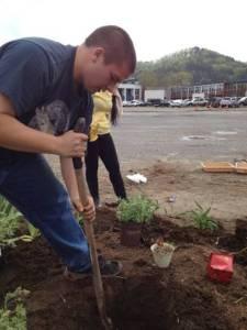 Constructing a Rain Garden