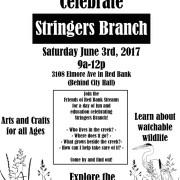 Celebrate Stringers Branch