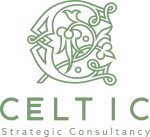 Celtic LLC