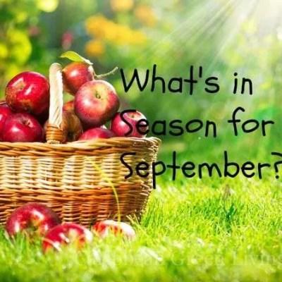 What's in season for September?