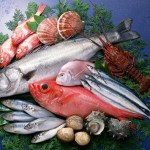 A quick guide to seafood