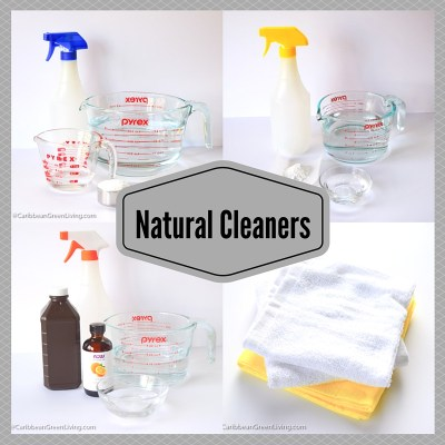 Using Natural Cleaners in the house