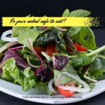 Eating out all the time? Is your salad safe to eat?