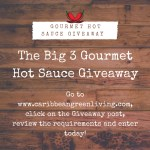 The Big 3 Gourmet Hot Sauce Giveaway