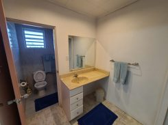 Blue house ensuite bathroom