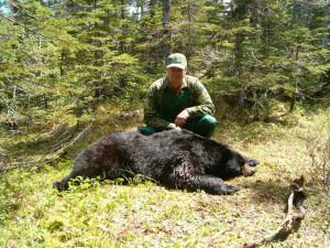 bear_003