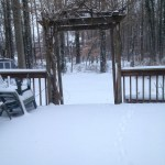 Photos of Jan 3 2014 blizzard