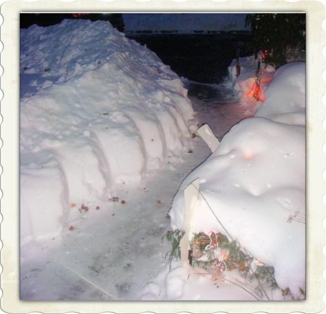 2011 Blizzard
