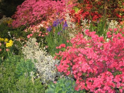 Last Year's Philadelphia Flower Show