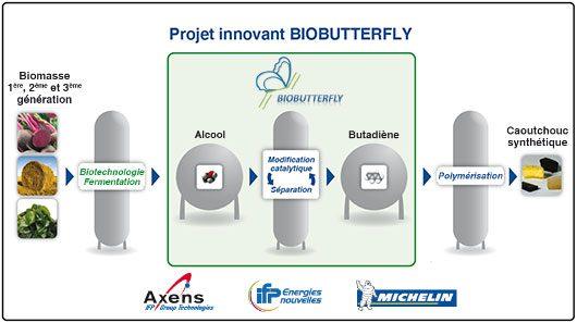 Michelin investit dans un pneu issu de la biomasse