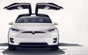Falcon Wings du Tesla X 60D