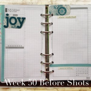 Week 50-Before Shot-Two Pages Per Day