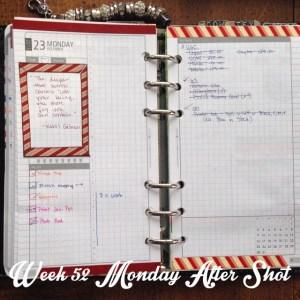 Week 52 Monday After Shot