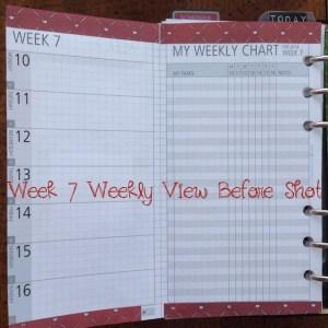 Week 7 Weekly View Before Shot