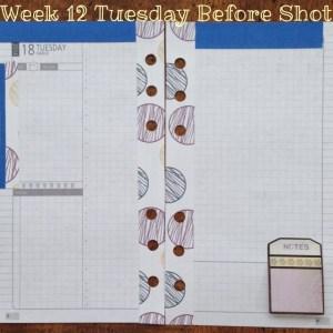 Week 12 Tuesday Before Shot