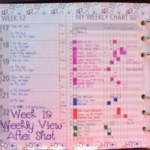 Week 12 Weekly View After Shot