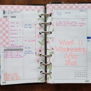 Week 11 Wednesday After Shot -- Filofax Personal Malden with DIYFish Lifemapping Inserts