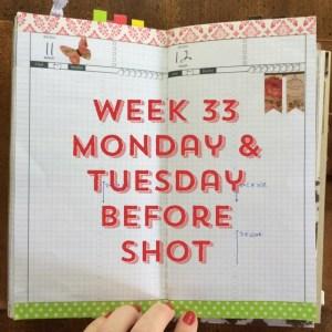 Week 33 Monday & Tuesday Before Shot