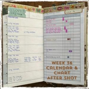 Week 36 Calendar & Chart After Shot