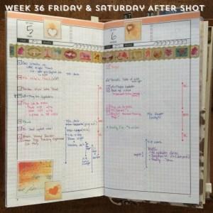 Week 36 Friday & Saturday After Shot