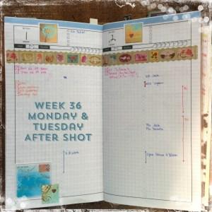 Week 36 Monday & Tuesday After Shot