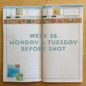 Week 36 Monday & Tuesday Before Shot