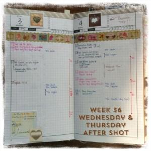 Week 36 Wednesday & Thursday After Shot