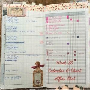 Week 38 Calendar & Chart After Shot